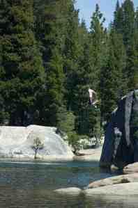Taking the plunge at Lake Utica